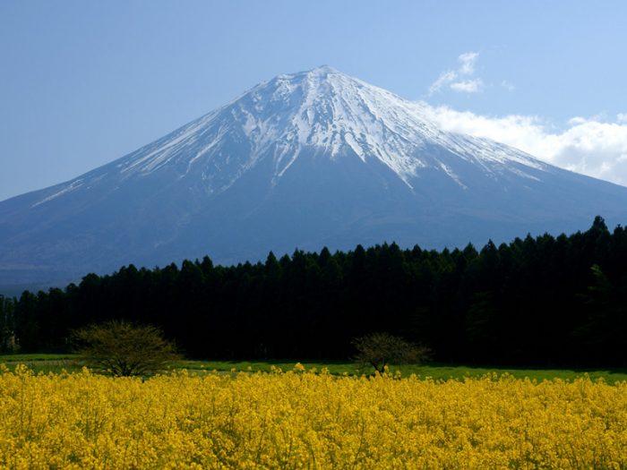 富士山思维模型