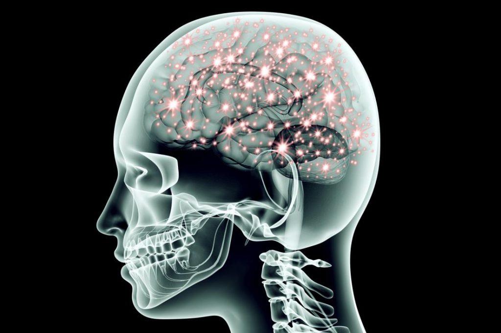 同步激活的大脑