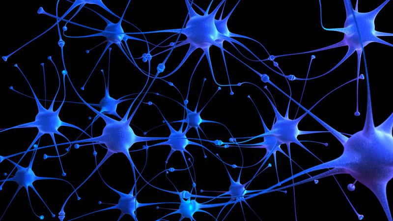 神经元之间通过化学物质传递电信号